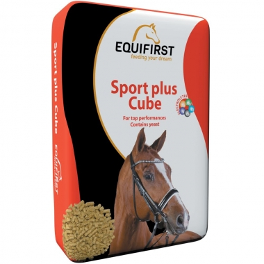 Sport Plus Cube.jpg