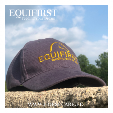 Equifirst.png