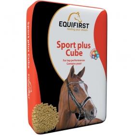 Sport Plus Cube (20kg)