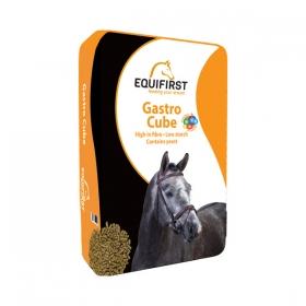 Gastro Cube 20kg